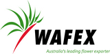 WAFEX new - Logo Aug 2012.jpg
